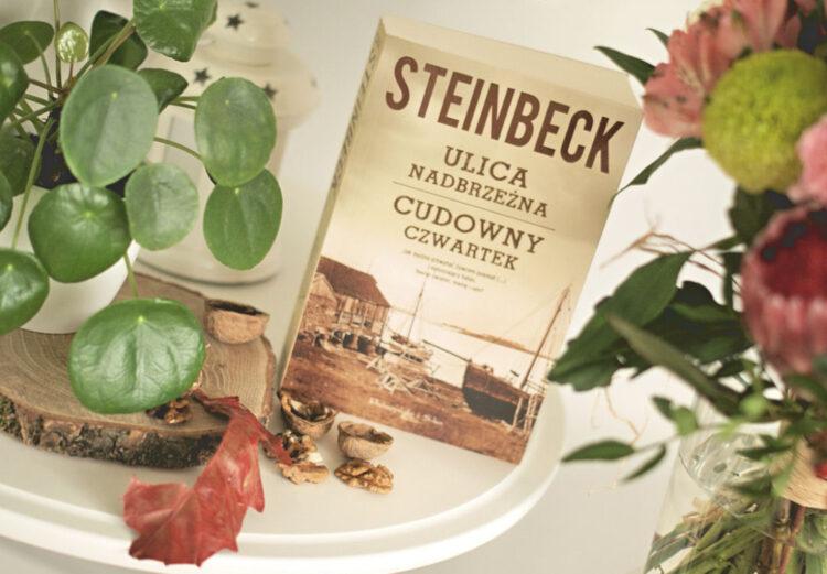 steinbeck_ulicanadbrzezna